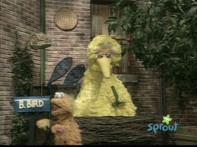 Episode 3795 Muppet Wiki