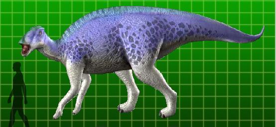 Brachylophosaurus - Di...