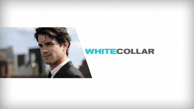 Cjr assignment 1 white collar crimes