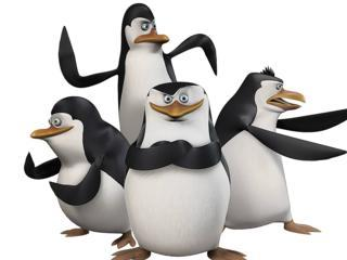Madagascar Pinguine