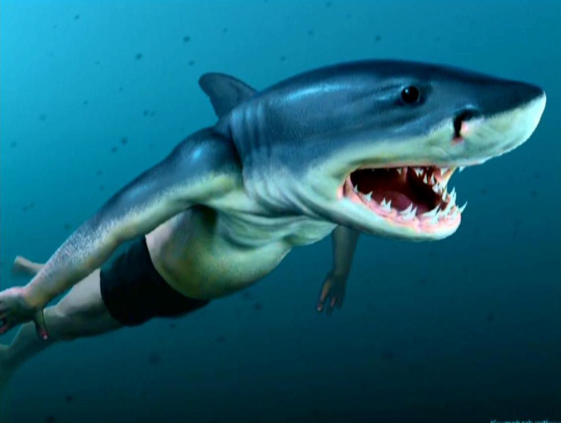 Conceptual_Artwork_of_Viktor_Krum_(Half-human,_Half-shark).jpg