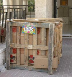 Childs Sukkah In Jerusalem