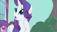 "Rarity ""How do I put this delicately?"" S1E25"
