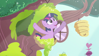 "Twilight ""morning in Ponyville shimmers"" S03E13"