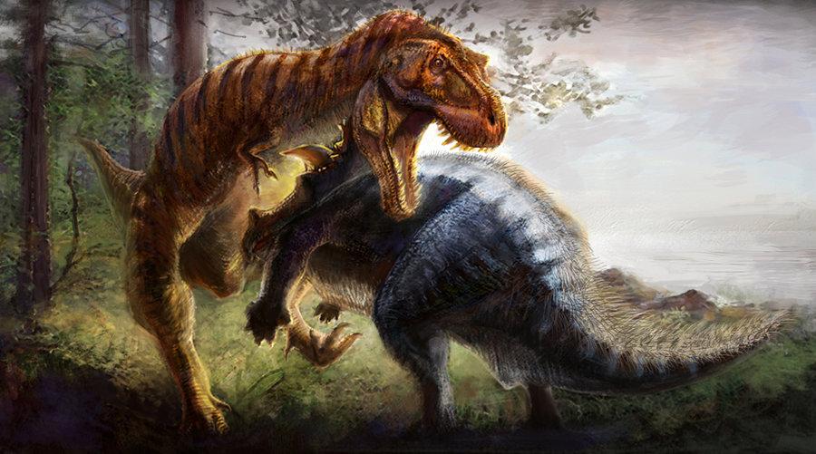 Tama  241 o de esta previsualizaci  243 n  640   215  356 p  237 xeles   Otra    T Rex Vs Triceratops Fighting