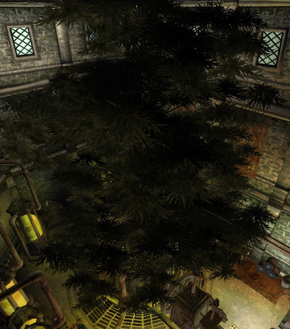 Hist Ağacı