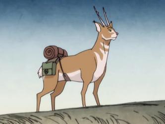 Tidus (Cat Deer) Mula