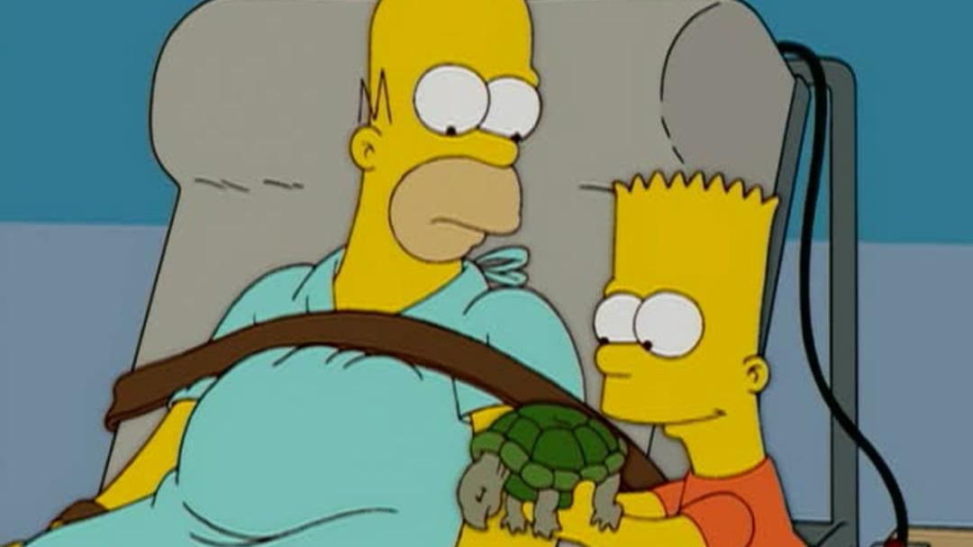 the simpsons season 13 dvd review