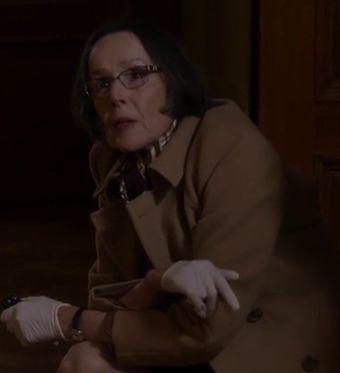 Susan Blommaert as Mr. Kaplan on The Blacklist